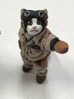 Military uniform cat